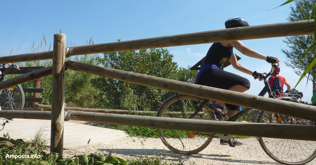 Amposta rep el segell de Cicloturisme i promociona la bicicleta com a part fonamental de l'experiència turística | Amposta.info