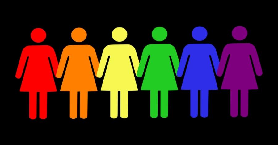 L'Ajuntament aprova el Pla Local de Polítiques de Dones i el Pla de Polítiques LGTBI | Amposta.info