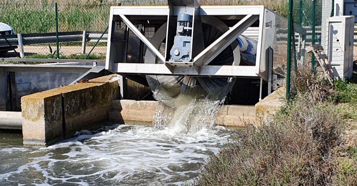 Entra en funcionament una nova bomba d'aigua per millorar l'ecosistema de l'Encanyissada | Amposta.info