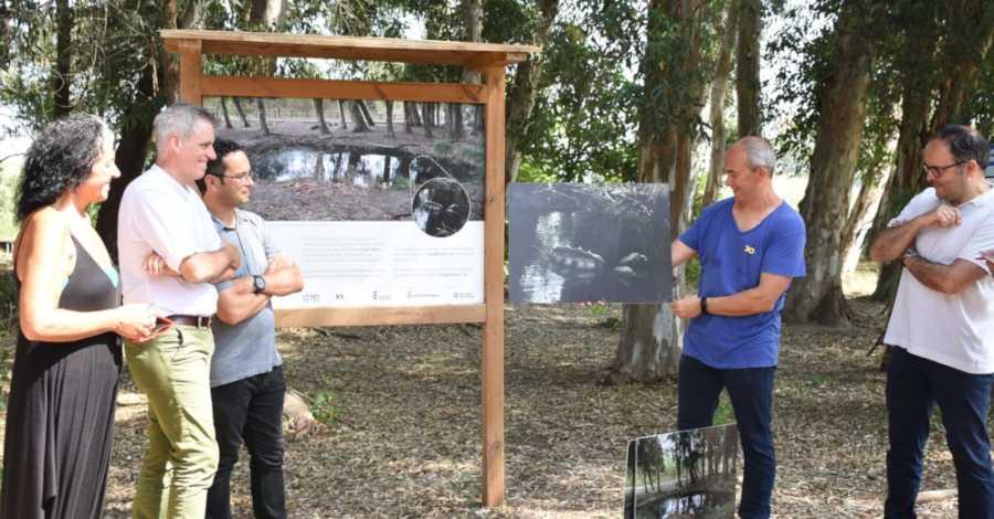 """L'artista Albert Gusi, guanyador de la quarta edició de l'XYZ, proposa """"caçar"""" gambusins als Ullals de Baltasar"""