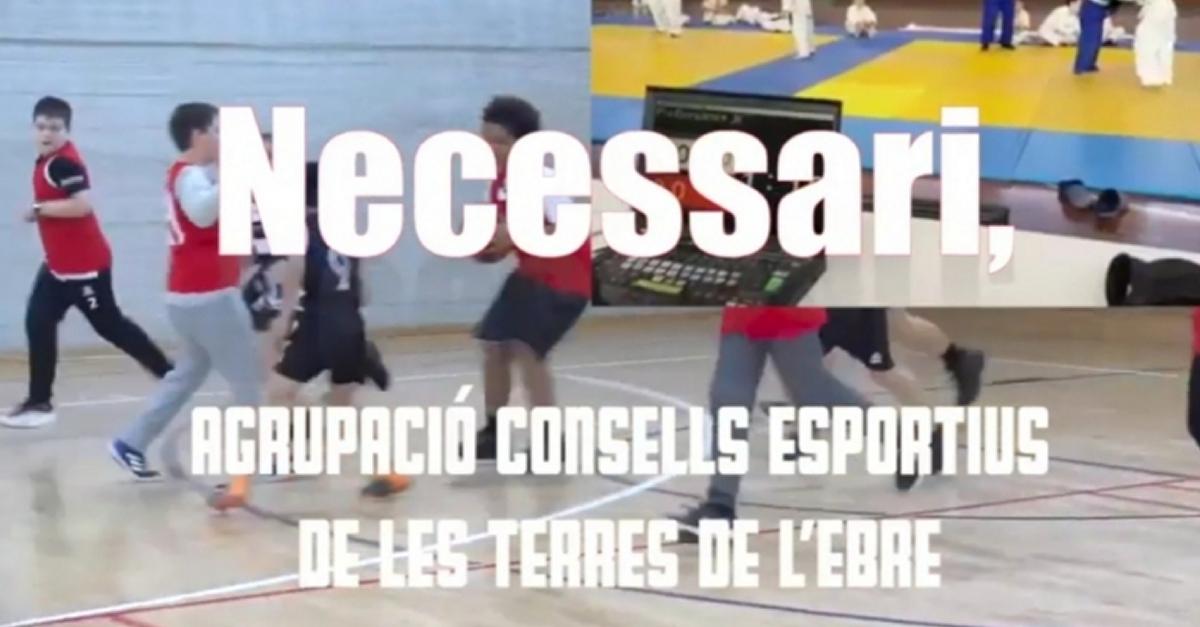 Els consells esportius de les Terres de l'Ebre engeguen una campanya per fomentar l'esport en edat escolar