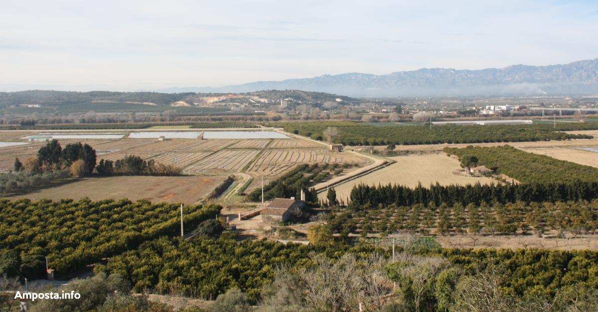 El COPATE promou el primer banc de terres territorial per enfortir el sector agrari ebrenc | Amposta.info