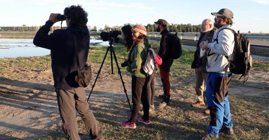 Curs d'hàbitats i ocells, per conèixer els principals hàbitats del delta i el seu entorn i els ocells que hi habiten