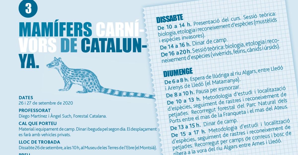 Curs: Mamífers carnívors de Catalunya