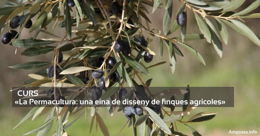 Curs «La Permacultura: una eina de disseny de finques agrícoles»