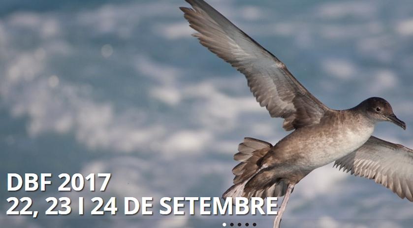 DELTABIRDING. IV Festival Internacional d'Ornitologia del Delta de l'Ebre