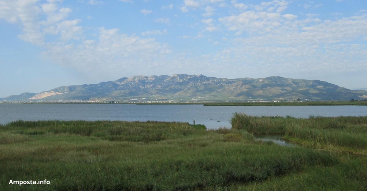 El Pla estatal de Protecció del Delta de l'Ebre s'aprovarà a l'agost