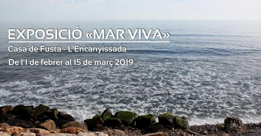 Exposició «Mar viva»