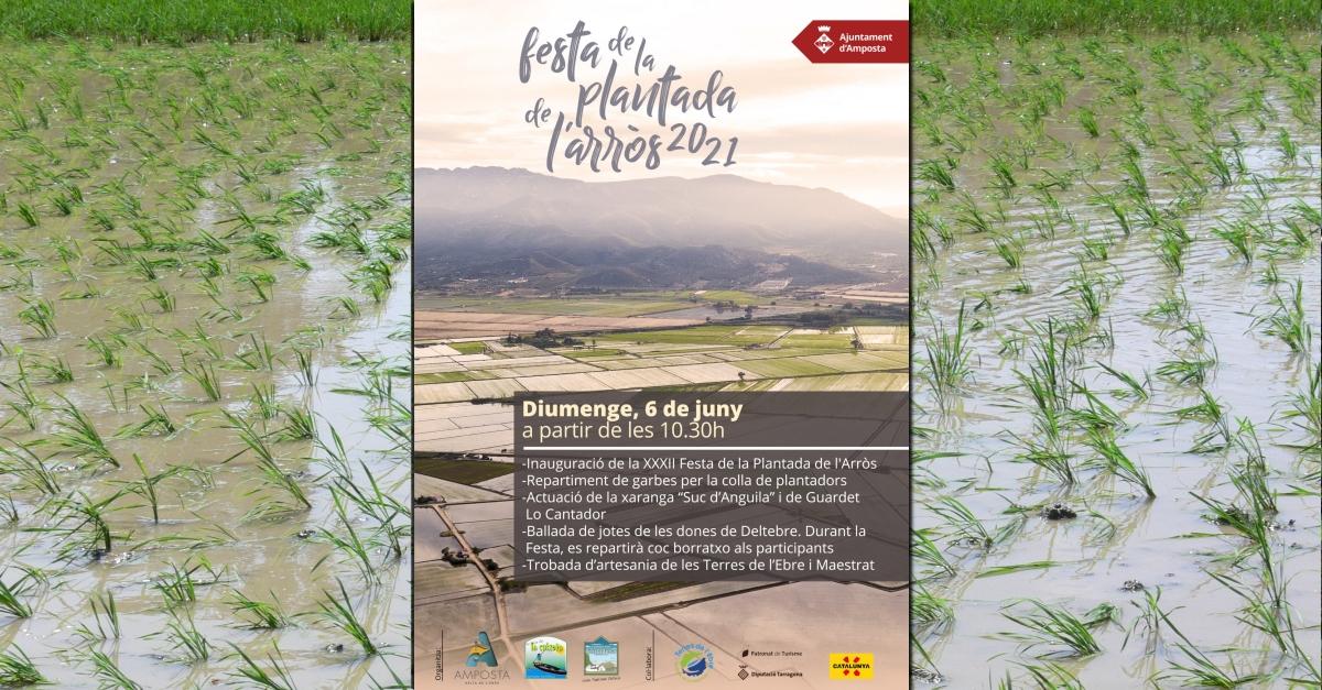 XXXII Festa de la plantada de l'arròs