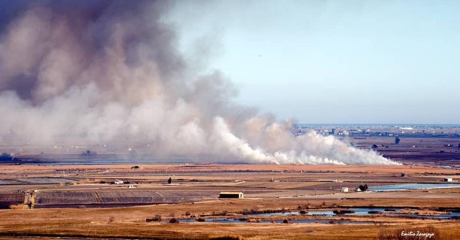 Un gran núvol de fum alerta als veïns del Delta