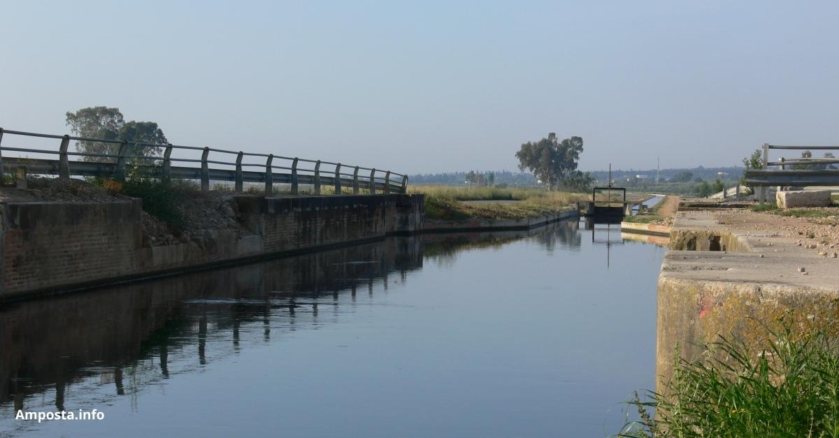 Comencen a inundar-se els camps d'arròs al Delta de l'Ebre | Amposta.info