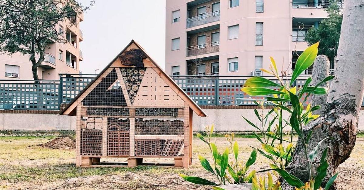 Instal·len un hotel d'insectes al Parc dels Xiribecs | Amposta.info