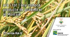 Montsià: Arròs Km 0