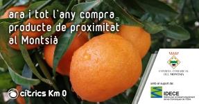 Montsià: Cítrics Km 0