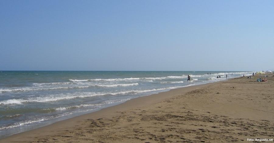 La platja Eucaliptus d'Amposta guardonada amb el distintiu «Platges verges»