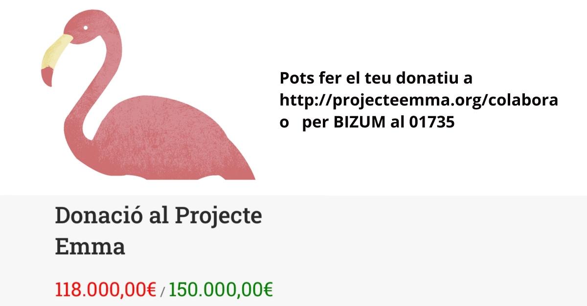 El Projecte Emma, a punt d'arribar l'objectiu de recaptar 150.000 euros per a la recerca contra el càncer de mama