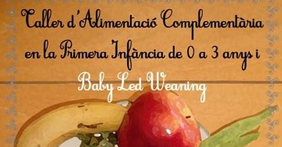Taller d'alimentació complementària en la primera infància de 0 a 3 anys