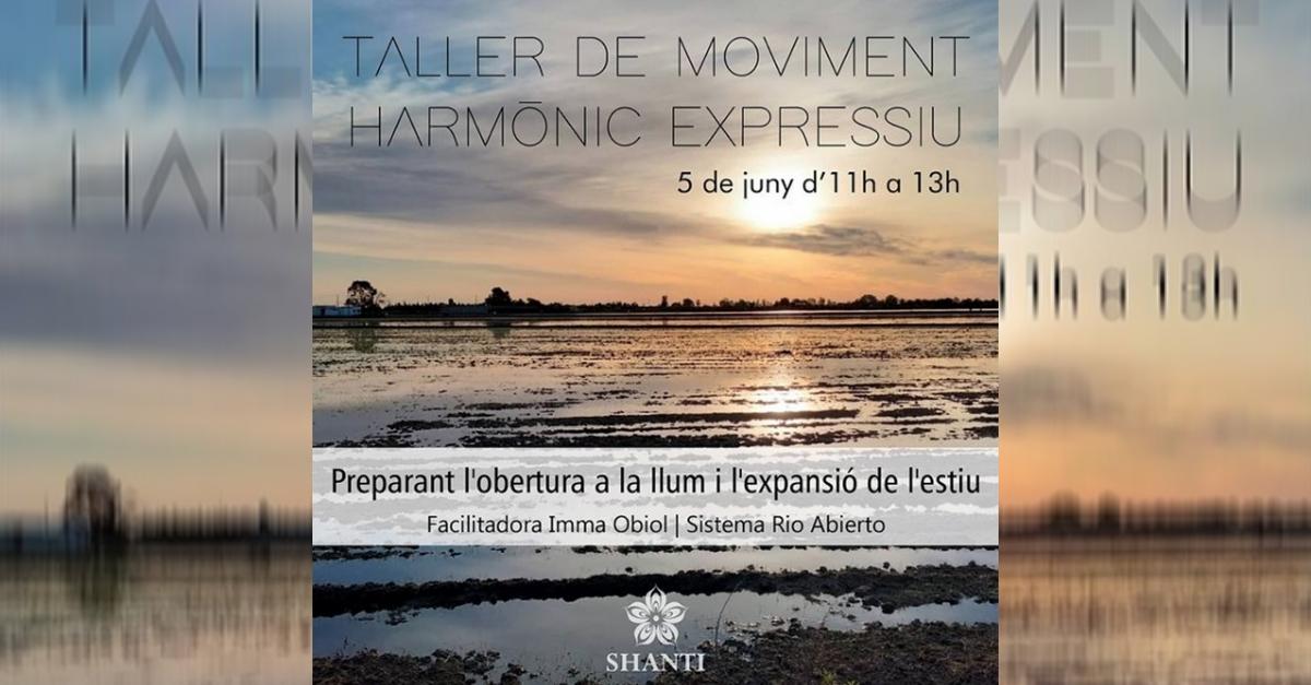 Taller de moviment harmònic expressiu