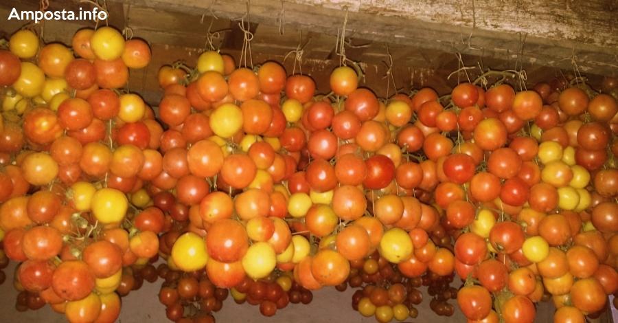 Tomates de penjar rostides