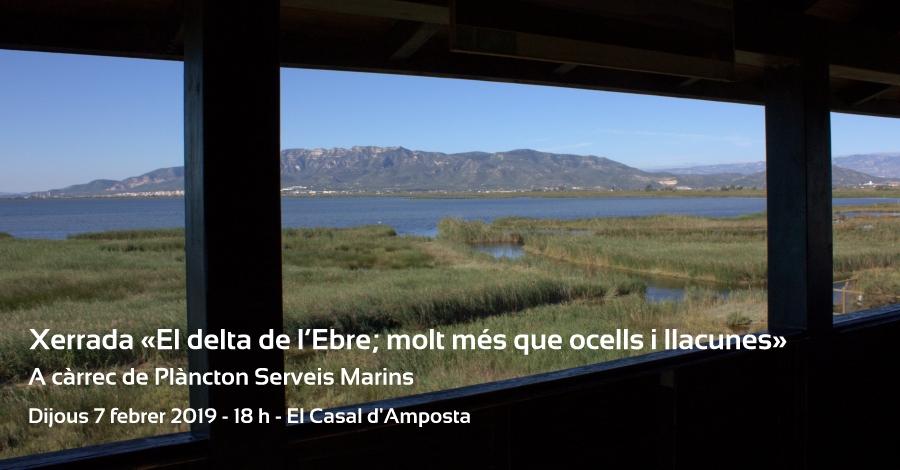 Xerrada «El delta de l'Ebre; molt més que ocells i llacunes»